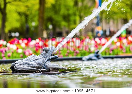 Quebec City Canada - May 29 2017: Closeup of floating toad sculpture on lily pad in water fountain in summer with foam on Avenue Honore Mercier