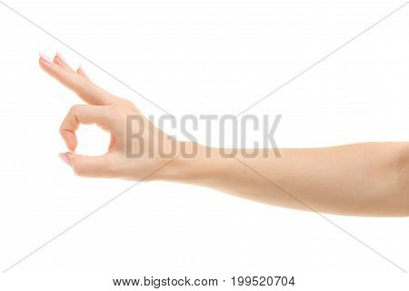 Female hand gestures emotions okay on a white background isolation