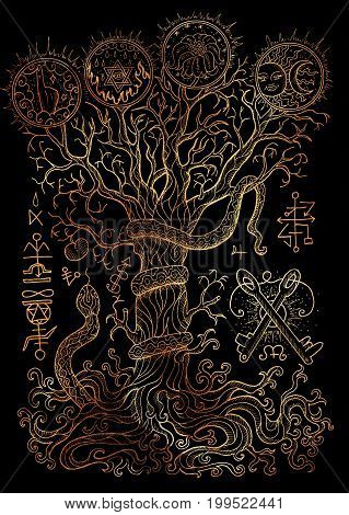 Mystic illustration with spiritual and christian religious symbols as snake, tree of knowledge and forbidden fruit on black background. Occult and esoteric drawing, gothic and wicca concept