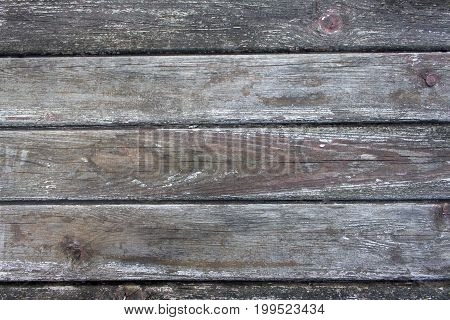 Eroded gray vintage grunge wooden board texture 1