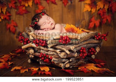 Cute newborn baby in a wreath of cones and berries in a basket with autumn leaves.