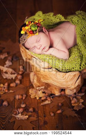 A cute newborn baby in a wreath of cones and berries sleeps on a stub