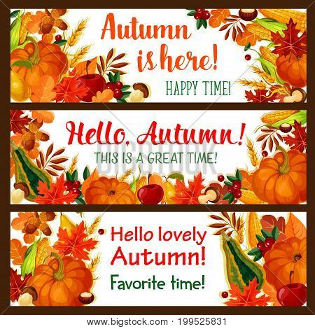 Hello Autumn banner set of fall nature season. Autumn leaf, pumpkin and corn vegetable, apple fruit, forest mushroom, acorn and cranberry border with yellow and orange foliage for fall harvest design