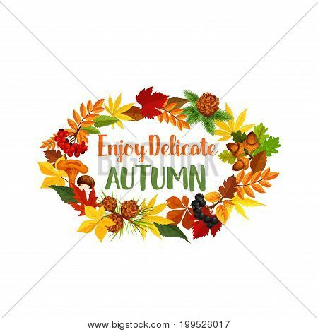 Autumn poster of seasonal fall greeting quote and pumpkin or rowan berry harvest. Vector design of autumn amanita chanterelle mushroom, pine tree cone and maple leaf or oak acorn on foliage wreath