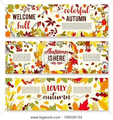 Welcome autumn banner set with fall leaf wreath. Autumn nature season leaves, yellow and orange foliage of forest tree, acorn and rowan berry arranged into frame for fall season holiday design