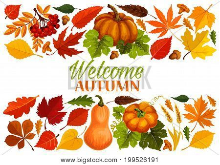 Autumn banner with border of fall leaf and harvest vegetable. Yellow maple leaves, orange pumpkin vegetable, acorn, red foliage of chestnut tree, forest mushroom, rowan berry, wheat for autumn design