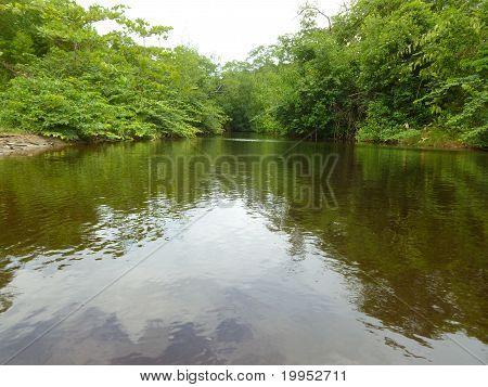 Manzanilla River