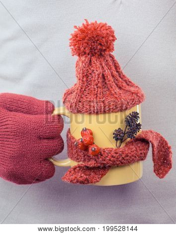 Vintage Photo, Hand Of Woman In Gloves Holding Cup Of Tea With Woolen Scarf And Cap