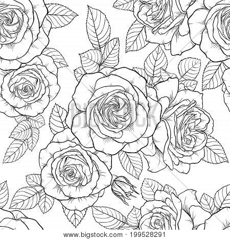 Beautiful monochrome black and white seamless pattern with roses leaves. Hand drawn contour lines. design greeting card and invitation of the wedding birthday Valentine s Day mother s day holiday