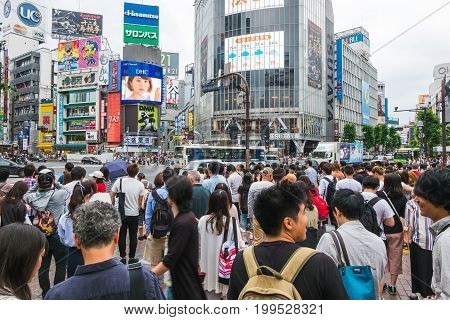 TOKYO, JAPAN - JUNE 18 2017 : pedestrians waiting for crossing the road on zebra crosswalk in shibuya