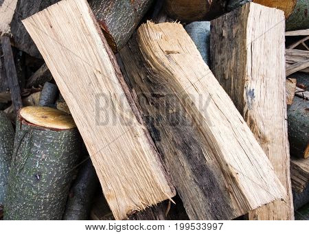 pile of logs cut and chopped into pieces
