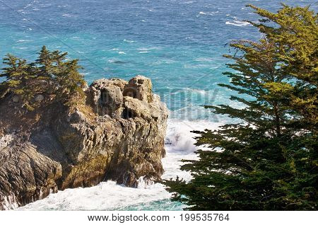 Pine trees along a cliffside in Big Sur, CA.