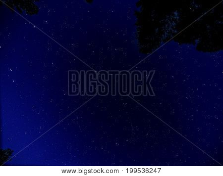 View of stars in the night sky from a campground