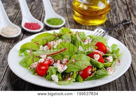 Salad Of Green Beans, Cottage And Herbs