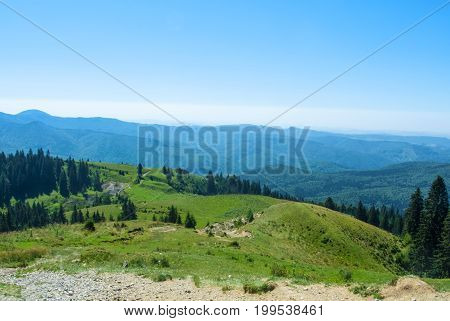 A View To Carpatian Mountais, Fir-tree Forest A Green Valley And A Path Over The Hill, Bucegi Natura