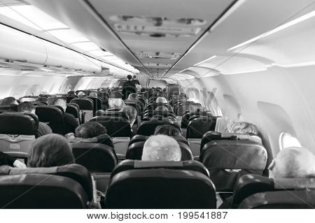 back view of passengers on chairs inside aircraft.