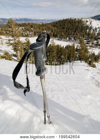 Trekking poles in the snow in Mammoth Lakes CA