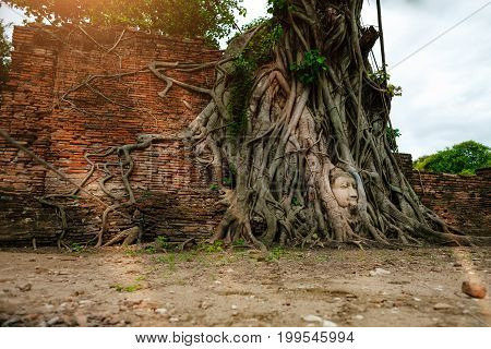 Ayutthaya Buddha Head Statue With Trapped In Bodhi Tree Roots At Wat Maha That (ayutthaya). Ayutthay