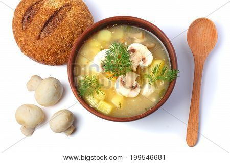 mushroom soup in bowl with spoon isolated on white background