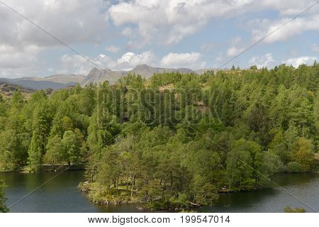 Tarn Hows in English Lake District with Langdale Pikes