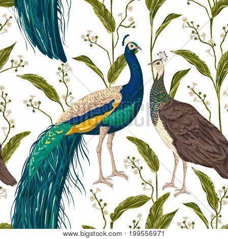 Seamless pattern with male and female peacock, flowers and leaves. Vintage hand drawn vector illustration in watercolor style