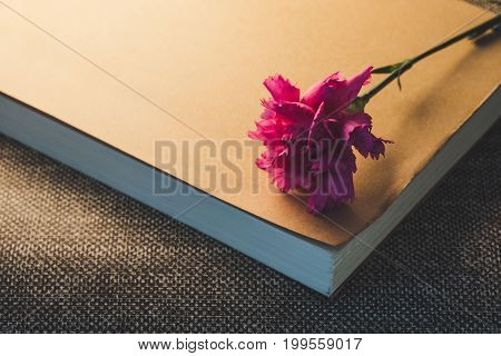Top View And Close Up Image On Beautiful Bright Pink Carnation On Classic Paper Book. Vintge Image S