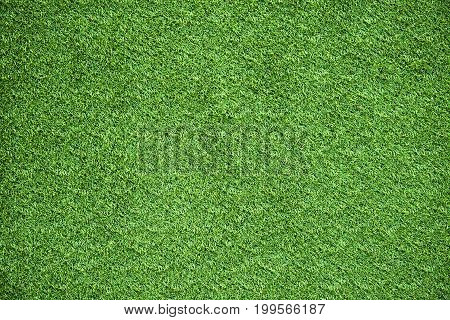 green grass background texture for activity golf soccer sport grounds or grassland designs