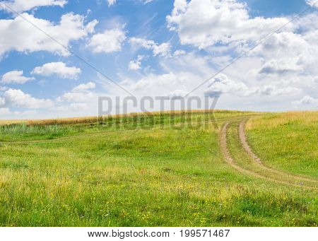 Slope of a hill overgrown with grass and wildflowers with dirt track on the background of wheat field and sky with clouds in summer day