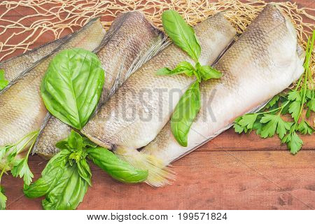 Several uncooked carcasses of the notothenia fish without of a heads and tails and twigs of basil and parsley closeup on the fishing net on a dark wooden surface