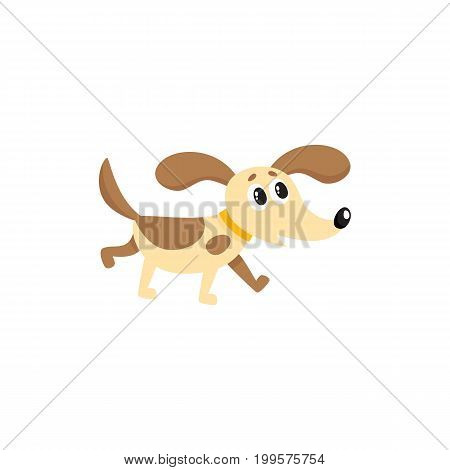 vector flat dog isolated illustration on a white background. Cute animal pet puppy brown white color