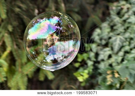 Colorful soap bubble with reflection of trees and a house in it