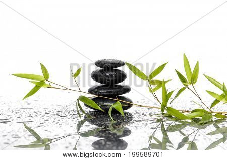 stacked black stones and bamboo leaf on wet background