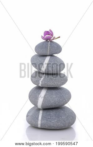 Pink orchid and stacked striped gray stones