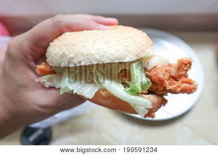 someone is holding a burger or chicken burger with vegetable