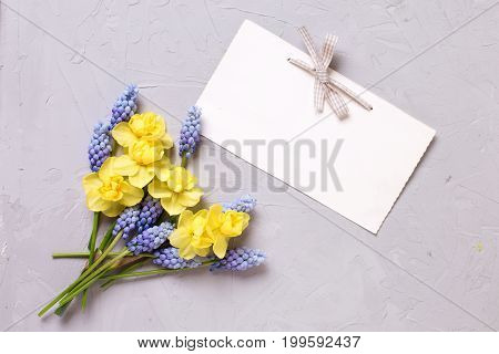 Yellow and blue spring flowers and empty tag on grey textured background. Selective focus. Place for text. Top view.