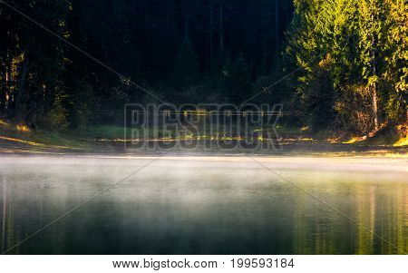 Foggy Surface Of The Forest Lake At Sunrise