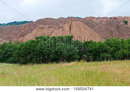 meadow trees and rock formations at roxborough state park in douglas county colorado