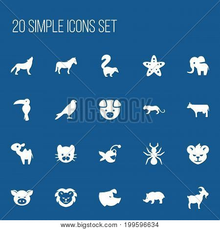 Set Of 20 Editable Animal Icons. Includes Symbols Such As Piggy, Sea Star, Skunk And More