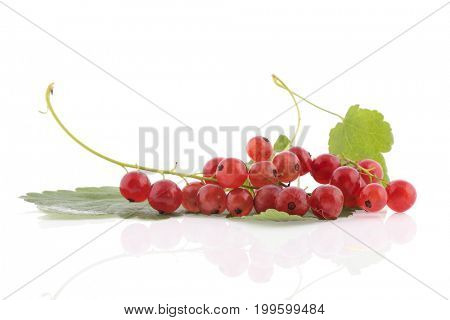 Fresh red currants with leafs isolated over white background
