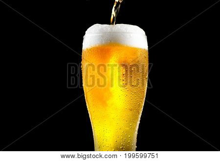 Beer. Cold Craft light Beer pouring in a glass with water drops. Craft Beer close up isolated on black background