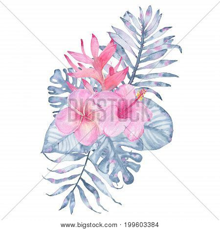 Watercolor hand painted tropical flower bouquet pink heliconia hibiscus frangipani and leaves of indigo palm monstera isolated on white background. Floral illustration arrangement. Botanical art