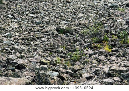 Perspective View On The Rocky Pebble Surface,