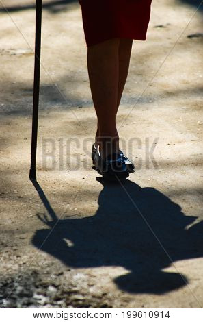 Close-up on legs of an old lady using a cane and walking by the sunny afternoon.