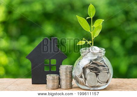 Stack of coins and jar with full of coins with growth sprout plant as property or mortgage investment concept.