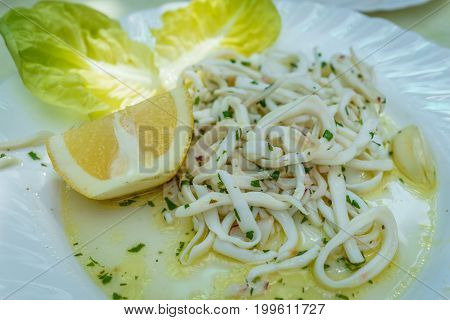 delicious cuttlefish in olive oil and lemon as appetizer Italian seafood.