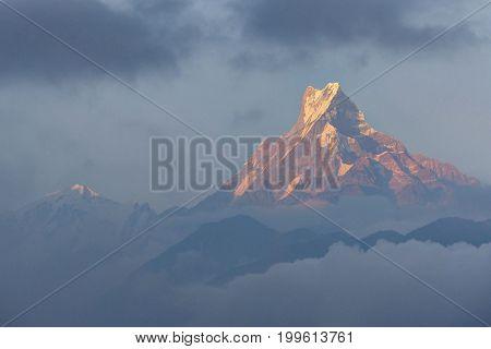 Mount Machhapuchchhre (Fish Tail) in evening soft sun light - from Ghandruk village - Nepal, Himalaya