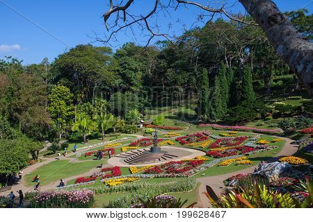 MAE FA LUANG, THAILAND - January 27,2017: Mae Fah Luang Garden on the mountain at Doi Tung is a beautiful place to visit on January 27,2017 in Chiang Rai, Thailand.