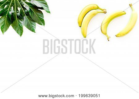 Exotic fruits. Fresh ripe bananas near big tropical leaf on white background top view.