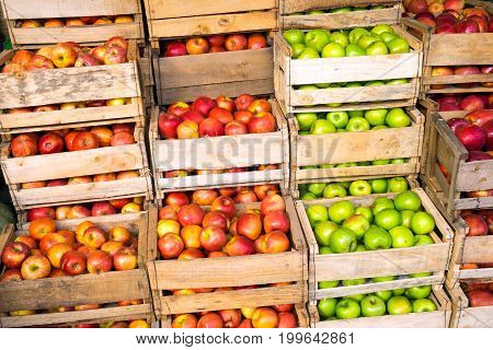 Fresh apples in wooden boxes for sale at a market in Valparaiso, Chile