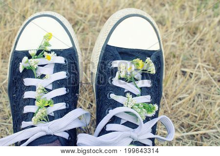 Closeup of a pair of black and white sneakers with wild chamomile flowers in the shoelaces (selective focus on the flowers) retro style